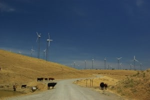Altamont_Pass_Wind_Farm_2759179884_compressed